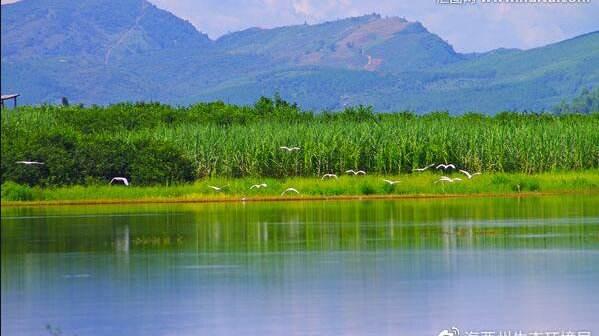 生态环境部:确保如期实现净土保卫战和农业农村污染治理攻坚战目标任务