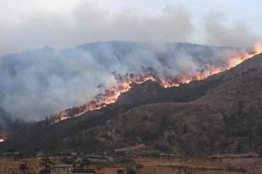 <strong>近期森林火灾多发频发 四川省、凉山州政府被约谈</strong>