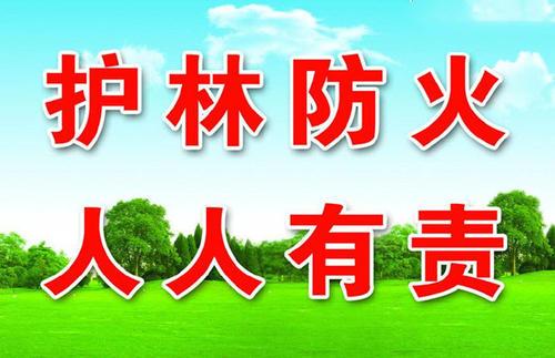 "<strong>国家森防办:""五一""期间强化森林草原火灾源头防控</strong>"
