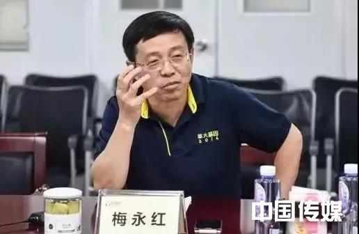 山东辞官市长梅永红,现在怎么样了
